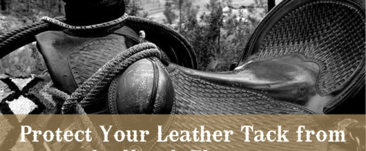 Protect Your Leather Tack from the Harsh Elements