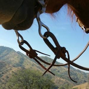 broken split reins